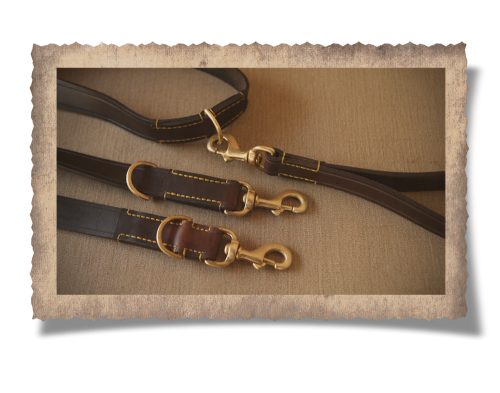 The Simonstown Trainer Dog Lead